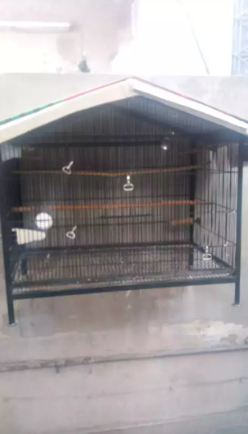 Parrot Cage_0